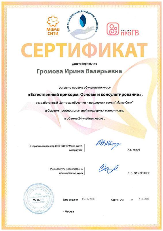 сертификат Громова